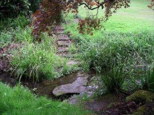 Site 02 - Ponsbourne 3 - Stream IMGP2402