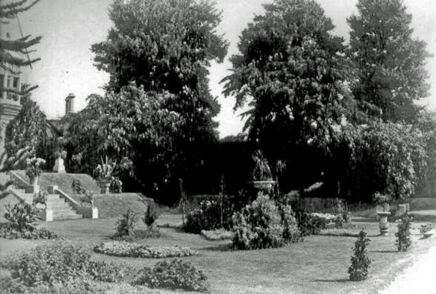 4-2-6-03 - Insole Court - Garden c1900 - A Salisbury 6