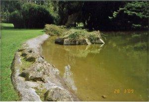 5-1-21-04 - Westonbirt - E J - Lake 1