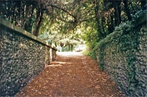 5-10-24-11 - Welbeck Path to Pool