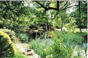 5-10-27-6 - Aldenham Poolside 3