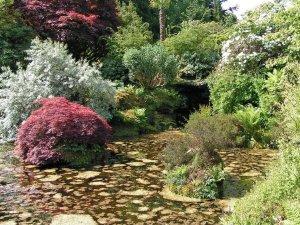 4-2-8-03 - Mount Stuart - Rock Garden GAlcorn - PICT1572e