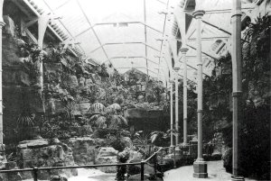 5-10-35-04 - Brighton Aquarium Fernery Photo