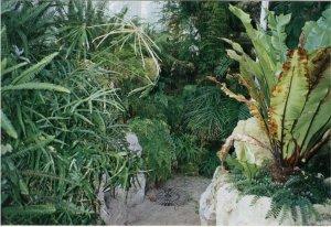5-10-37-02 - Acacias Island 1