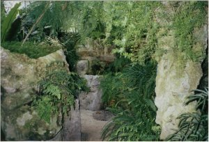 5-10-37-03 - Acacias Island 2