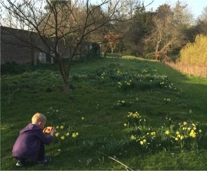 5-10-41-05 - Lamberhurst - Walled Garden