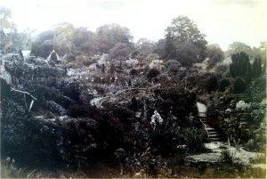 5-10-41-06 - Lamberhurst - Sunken Garden c1885