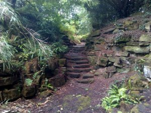 5-10-41-09 - Lamberhurst - Rock Garden Steps 1