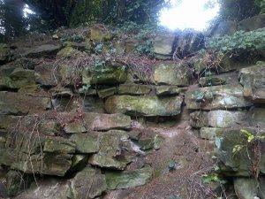 5-10-41-10 - Lamberhurst - Rock Garden Cliff