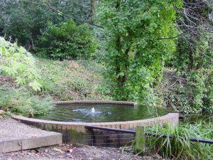 5-1-44-03 - Bromley Gardens - Chaleybeate Well 2010