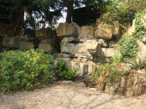 5-1-44-04 - Bromley Gardens - Fernery
