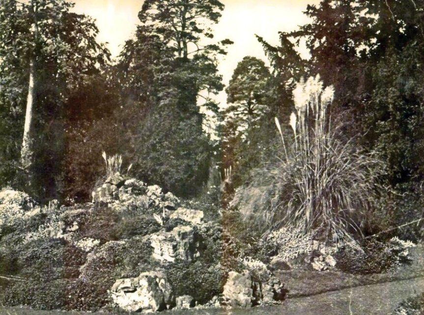 5-10-55-01 - Bayfordbury Rock Garden