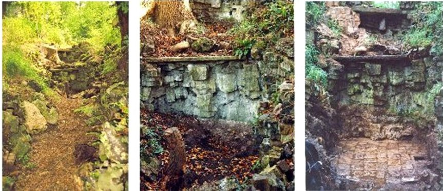 5-10-55-04 - Bayfordbury Pinetum Grotto