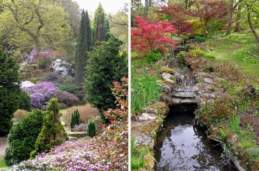 5-1-59-2 - Exbury Gardens - N Philpott Compo
