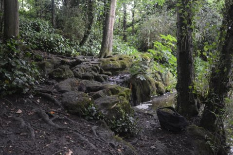 160708 - Trent Park Cascade - Philip Masters