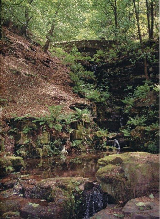 170503 - Rivington Ravine
