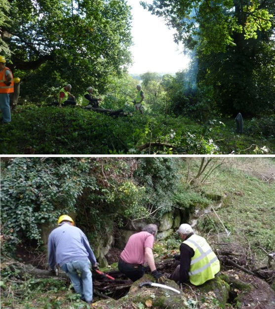 170507 - Danesbury - Before and During Clearing - J Roper
