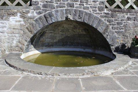 170807 - Dyffryn - Li.ly Tank Garden - D Edmunds _MG_2117